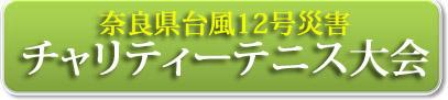 台風12号チャリティー大会_バナー
